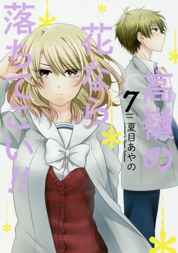 Takane-no-Hana-Nara-Ochitekoi-manga-300x419 ¡Lo que quieren las mujeres-mira Takane no Hana Nara Ochitekoi!  (¡¡Flor noble, se enamoró de mí !!)
