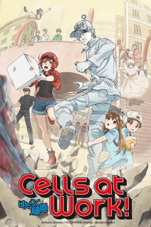Hataraku-Saibou-Cells-at-Work-Wallpaper-500x498 La ciencia detrás de Hataraku Saibou (¡células en el trabajo!)